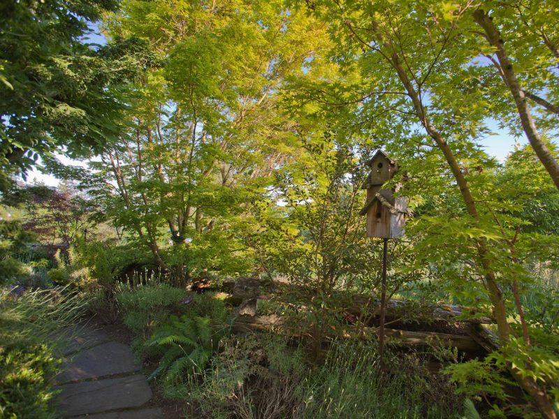 Garden 1 path