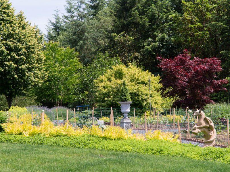 Garden 5 perennial bed with dragon
